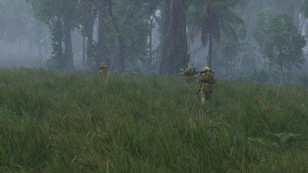 1st Cav Slips into the trees