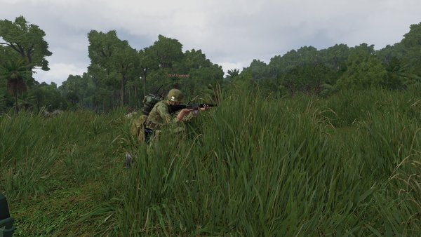 Cummings takes aim through the grass